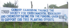 SETAC Trees Initiative