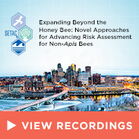 Expanding Beyond the Honey Bee: Novel Approaches for Advancing Risk Assessment for Non-Apis Bees